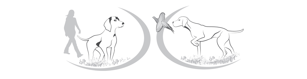 Hundeverständnis logo